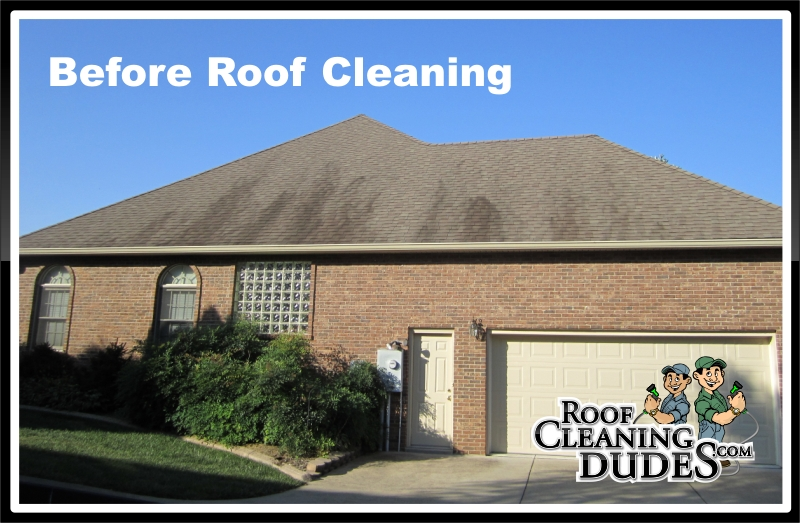 nicholasville_roof_cleaning1