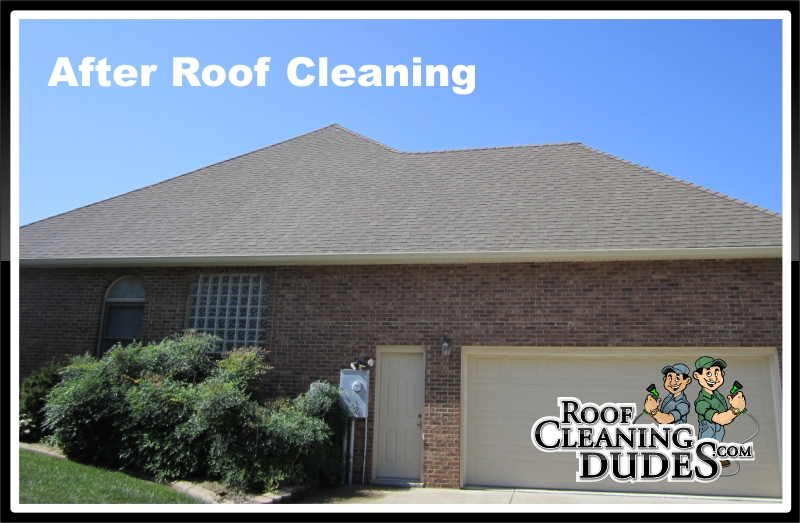 nicholasville_roof_cleaning2